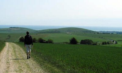 South Downs Way footpath1-cropped